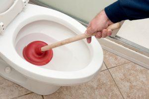 déboucher-WC